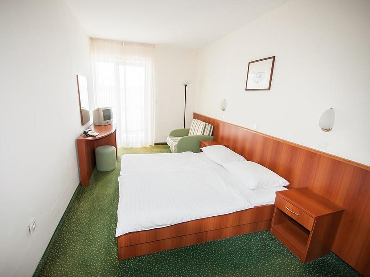 Double room standard, sea view, single use with half board