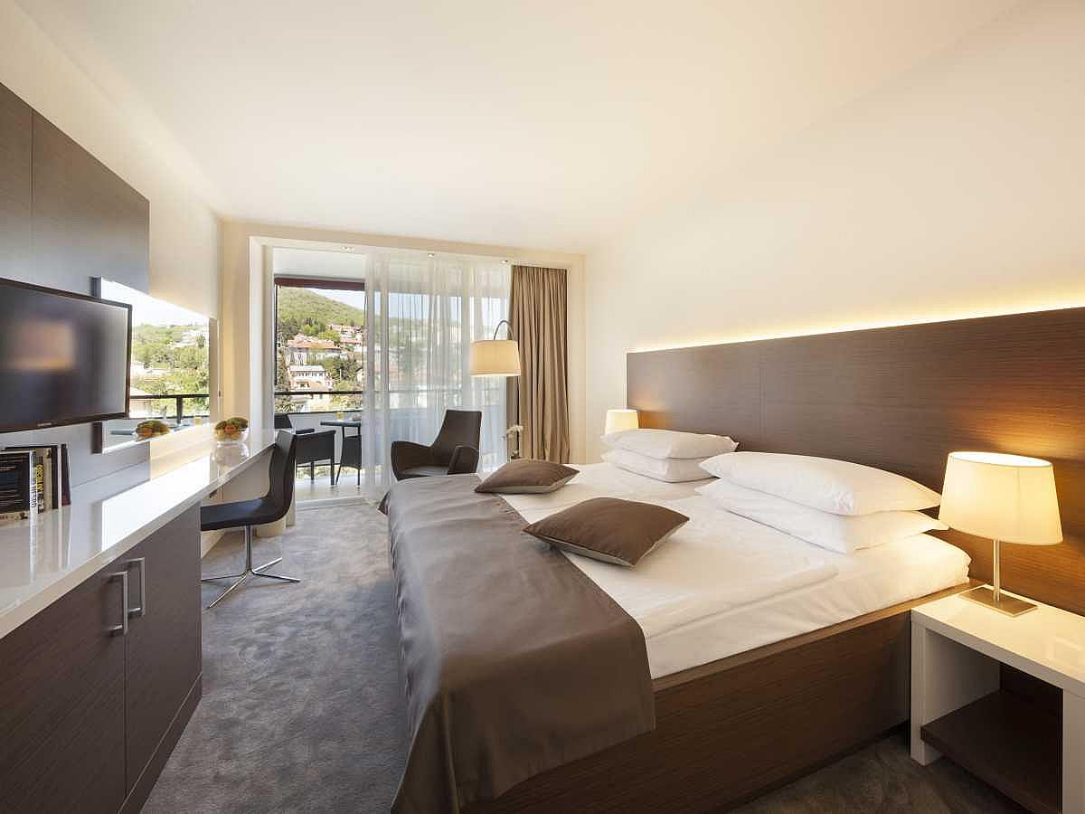 Double room standard park side and balcony with half board